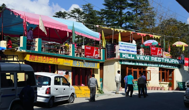 The road passing through Dhanaulti is lined with Deodar trees on both sides
