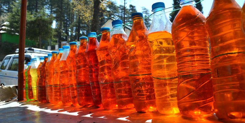 Rhododendron Juice at Dhanaulti
