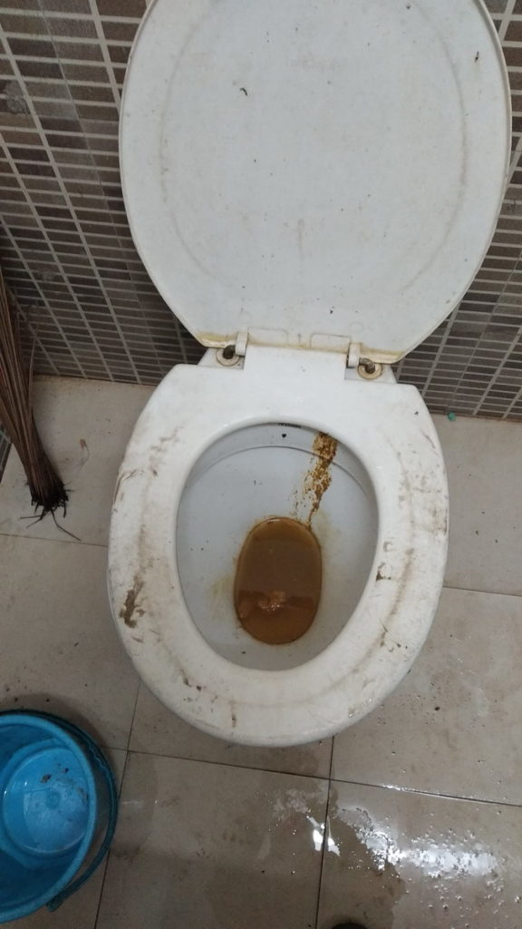 The hell on Earth !   Commode in the public toilet at Birla Mandir campus, Hyderabad.  Shame on you, Birla Foundation!